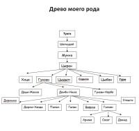 Генеологическое древо Гунзыновой Дэжид.