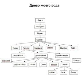 geneologicheskoe-drevo-gunzynovoj-dezhid-1